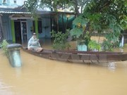 """台风""""达维""""袭击越南 已致27人死亡22人失踪"""