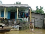 欧盟愿意帮助越南开展台风灾后恢复重建工作