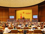第十四届国会第四次会议:《2018年经济社会发展计划》决议以84.98%的赞成率获得通过