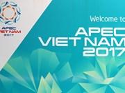 APEC第25次领导人会议今日在岘港市召开