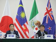 越南APEC会议:11国将TPP更名为《跨太平洋伙伴全面进展协定》