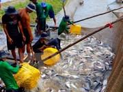越南参加在阿尔及利亚举行关于渔业与水产养殖业的国际展会