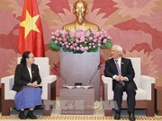 越南国会副主席汪周刘会见柬埔寨外交、国际合作与新闻宣传委员会主任