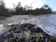 卢森堡援助越南承天顺化省开展应对气候变化项目
