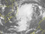 越南政府总理下达公函 指导有关省市和部委展开应对第14号台风工作