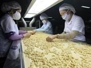越南腰果仁出口位居世界第一