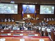 柬埔寨国家选举委员会进行分配反对党救国党的国会席位