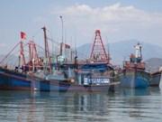 2017年茶荣省水产总产量达19.9万吨
