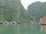 广宁省努力保护与弘扬下龙湾渔村特色的文化价值
