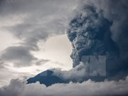 印尼阿贡火山喷发:越南驻印尼大使馆继续向被滞留越南人提供援助
