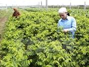韩国投资商拟在河南省投资农产品生产和加工项目