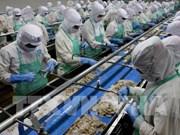 越南批准紧急措施实施计划 克服欧洲委员会对IUU的警告