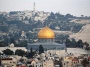 越南外交部发言人:有关耶路撒冷的所有解决方案应遵守国际法