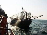巴地头顿省:将海上受伤的海外水手安全送上岸救治