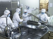 越南开始生产口蹄疫疫苗