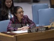 越南呼吁联合国制定避免冲突和维持和平的长期战略