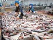 2017年越南查鱼出口额有望达18亿美元