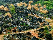 越南推进同文岩石高原旅游发展
