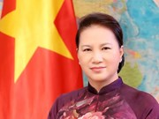 阮氏金银:越南国会一定出色地完成所交付的工作任务 不愧于党、国家和人民的信任