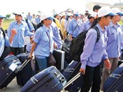 同塔省成为九龙江三角洲地区境外劳务输出工作的亮点