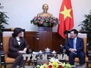 越南政府副总理兼外长范平明会见古巴新任驻越大使