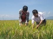 大力吸引企业向农业领域投资