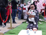 河内大学生再现日本人过年传统习俗