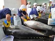印度尼西亚加大对海事和渔业领域的投资力度