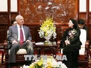 越南国家副主席邓氏玉盛会见俄罗斯代表团