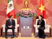 越南国会主席阮氏金银会见墨西哥参议长埃内斯托
