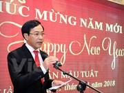 旅居香港越南人欢欢喜喜迎新年