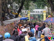 河内将举办63个迎新春鲜花集市