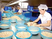 2018年1月份同奈省实现贸易顺差额达2.67亿美元