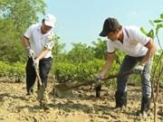 胡志明市通过海滨植树造林来应对气候变化