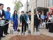 阮氏金银参加在国会大厦周围进行的羊蹄甲树植树活动