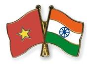 """印度专家:越南在印度""""向东行动""""政策中扮演着举足轻重的角色"""
