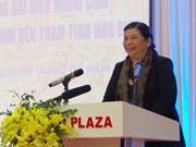 国会常务副主席丛氏放同驻越大使和外交代表机构首席代表访问和平省