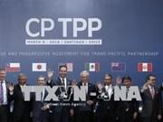 世行:CPTPP将为越南带来巨大的经济利益