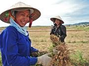 """""""农村妇女与可持续发展""""摄影大赛正式启动"""