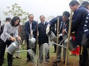 北宁省举行樱花园捐赠暨植树仪式