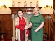 越南国会主席阮氏金银与荷兰参议院议长克诺尔举行会谈