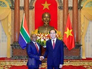 陈大光接受南非和埃及新任驻越大使递交国书