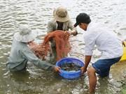 平定省采用高新技术的虾类养殖模式