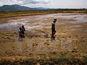 《气候变化背景下实现可持续发展的绿色经济》一书问世
