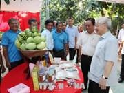 越南共产党总书记阮富仲走访同塔省