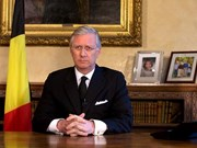 比利时国王:比越关系发展势头良好