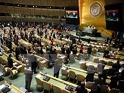 越南在联合国分享关于保障土著人民权利的经验