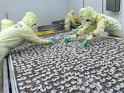 让越南虾走出国门  挺进国际市场