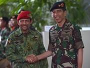 印尼与文莱加强多方面合作