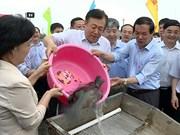 越中携手推动北部湾渔业资源可持续利用与发展